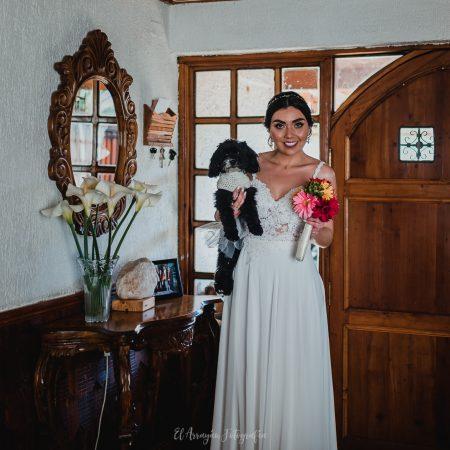 Tu Perro como invitado de honor a tu matrimonio.